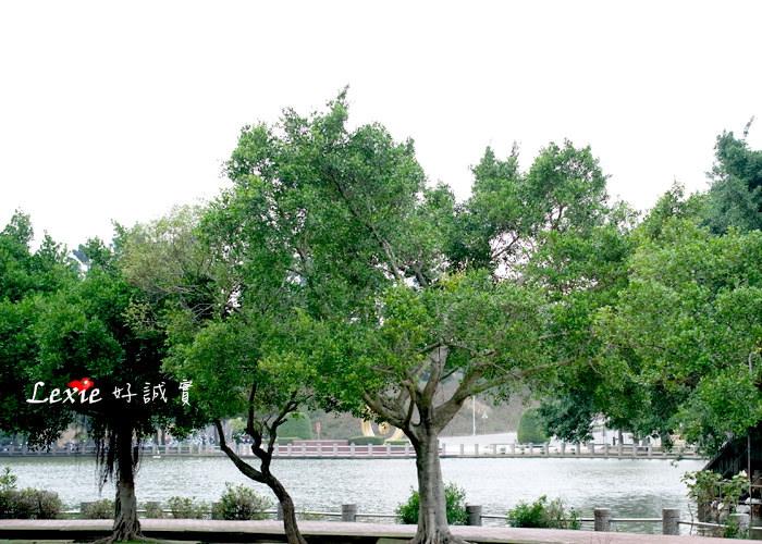 林口中正體育園區志清湖8