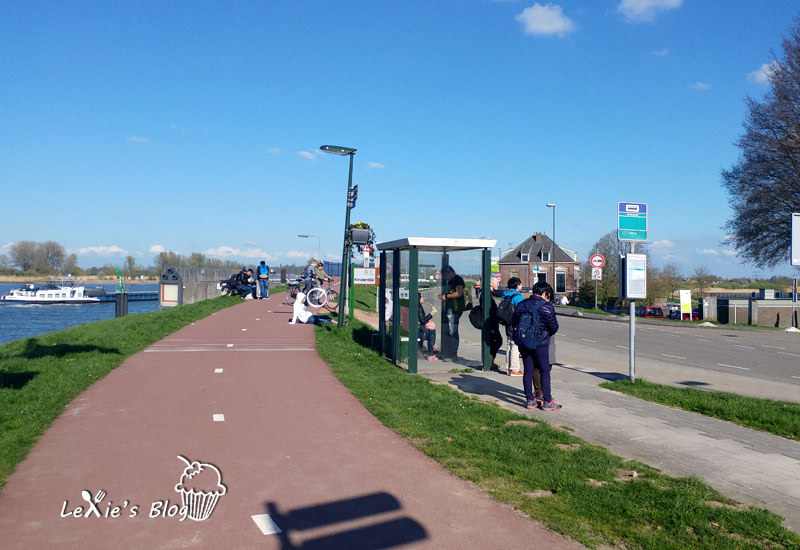 小孩堤防Kinderdijk23.jpg